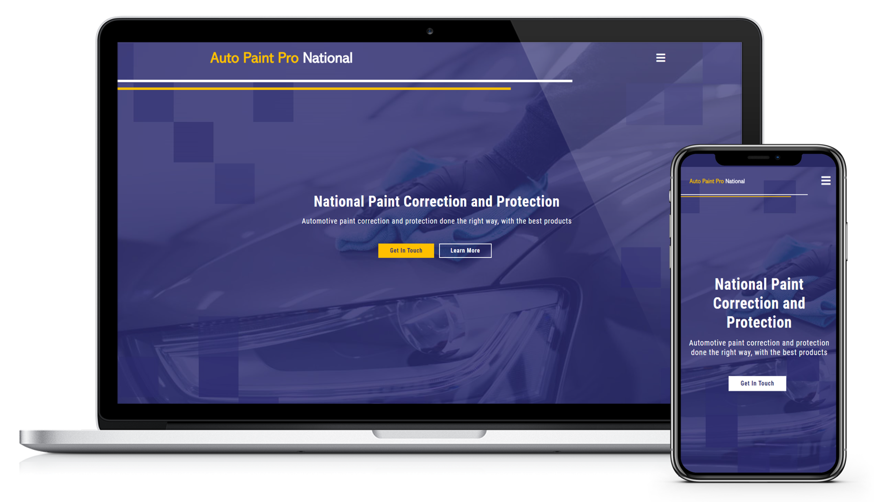 Auto Paint Pro National Website